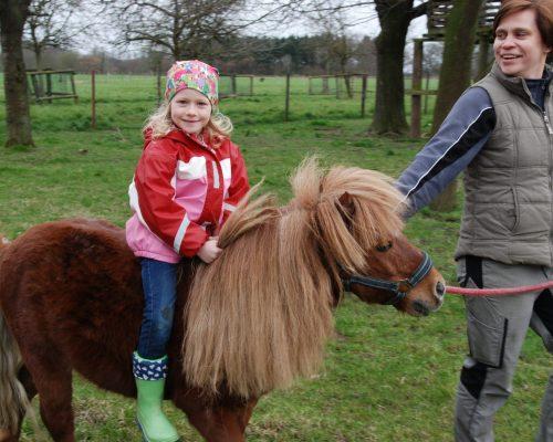 reistunde_pony_enkenshof